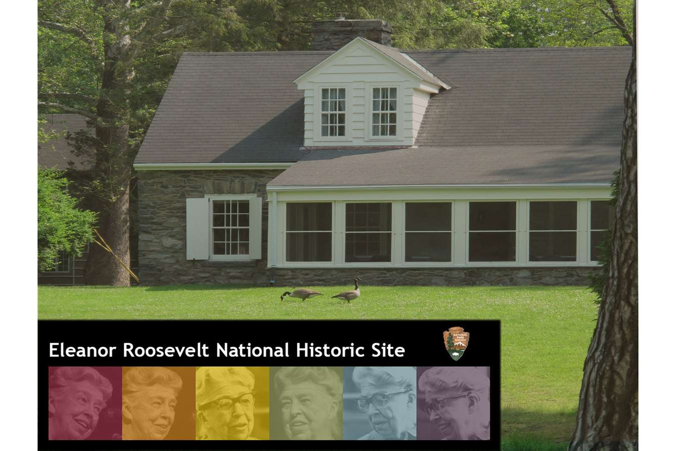 ELRO Logo : For Eleanor Roosevelts Val Kill Home, we created an Iconic NPS Identity that relates to key aspects of E.R.'s life, color coding is used throughout exhibit areas.